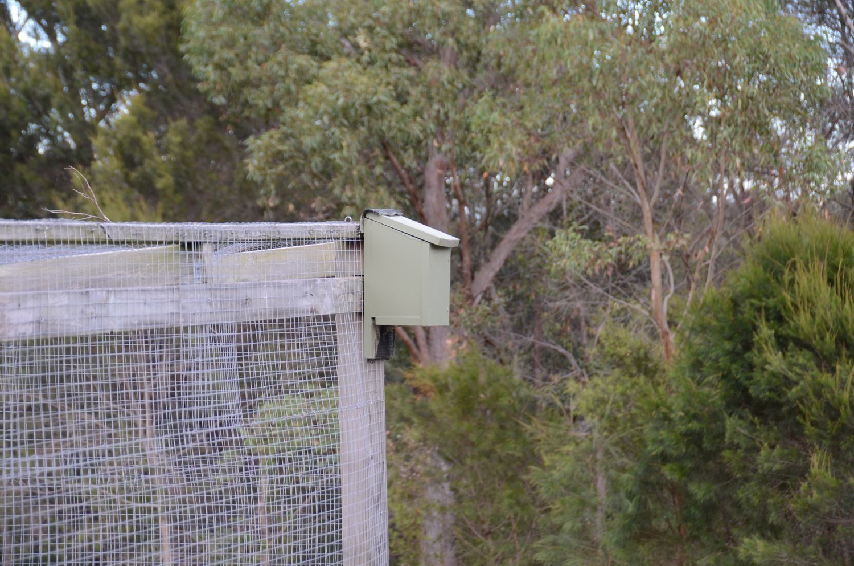 Microbat nesting box